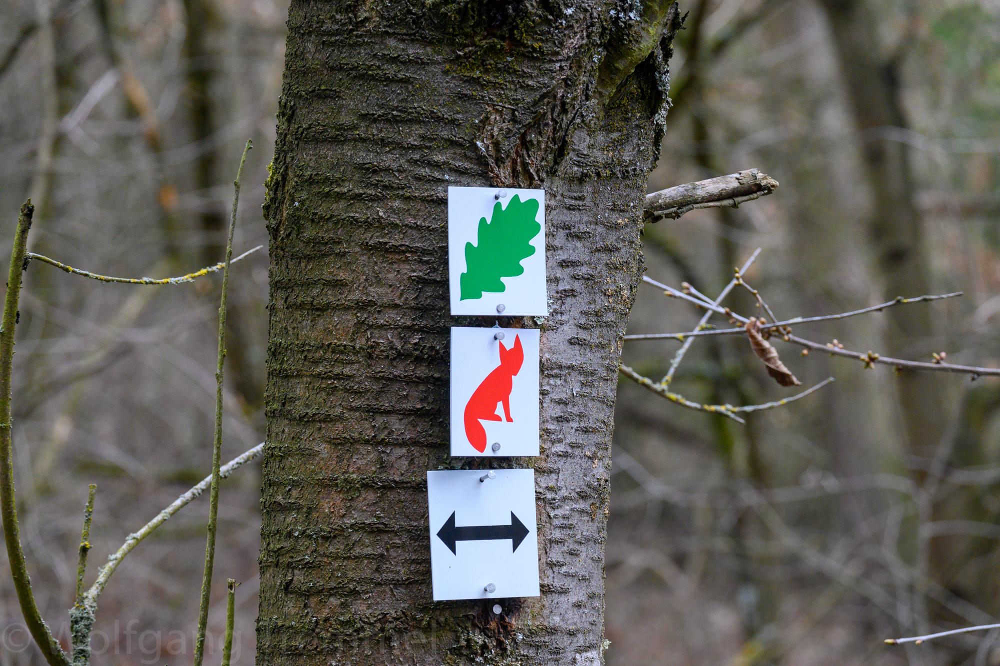 """""""Eichblattweg"""" bei Pfaffenwiesbach"""